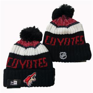 2020 Arizona Coyotes Team Logo Stitched Hockey Sports Beanie Hat YD