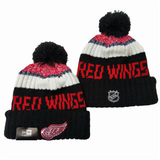2020 Detroit Red Wings Team Logo Stitched Hockey Sports Beanie Hat YD