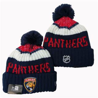 2020 Florida Panthers Team Logo Stitched Hockey Sports Beanie Hat YD